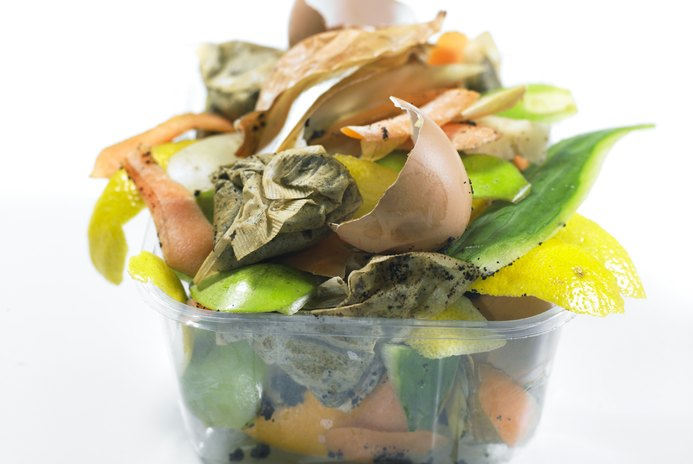 Foods That Can Go in the Compost Pile