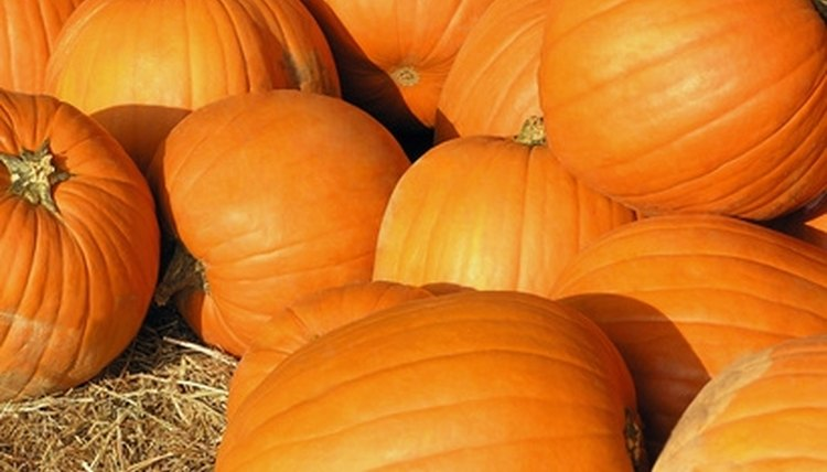 Pumpkins can be used as a decoration for your fall festival