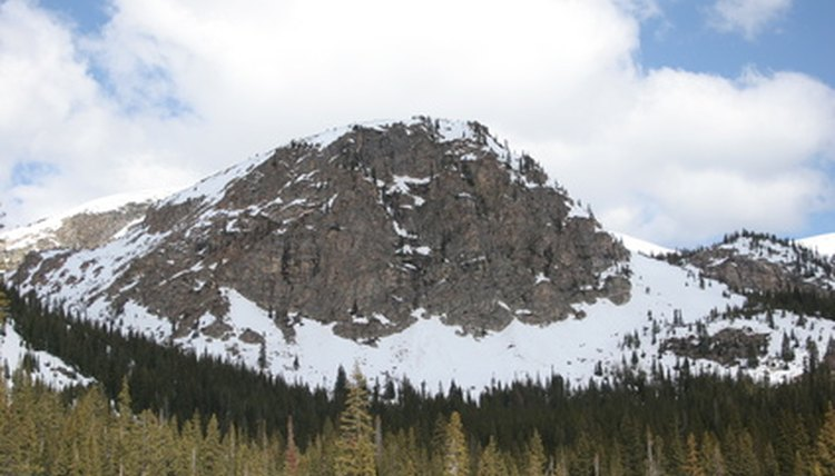 A biome brochure describes a biome such as the Rocky Mountains in North America.