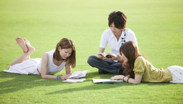 Students are studying on the lawn.