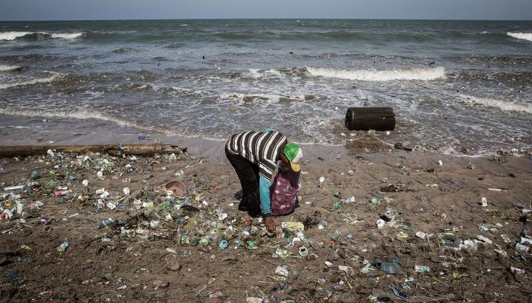 A man collecting trash that has washed up on the beach.