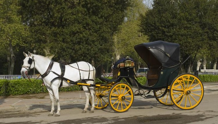A white horse pulling a convertible carriage in the park.