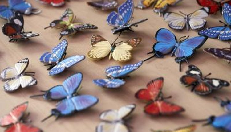 Butterflies are a species of insects.