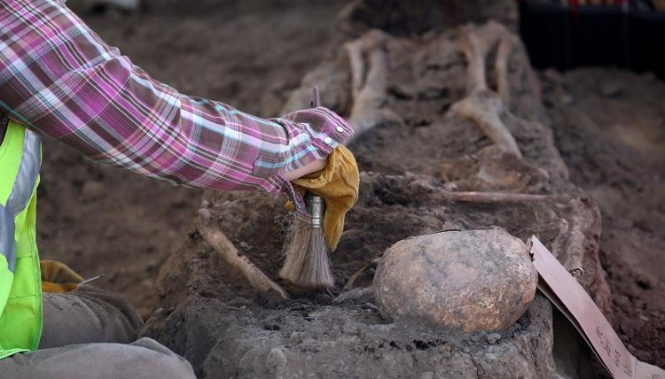 An archaeologist brushing a human skeleton during an excavation.