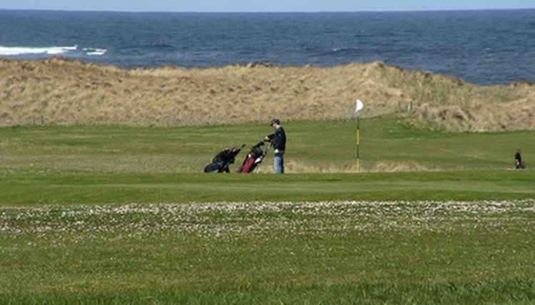 Links golf courses are situated along coastal regions.