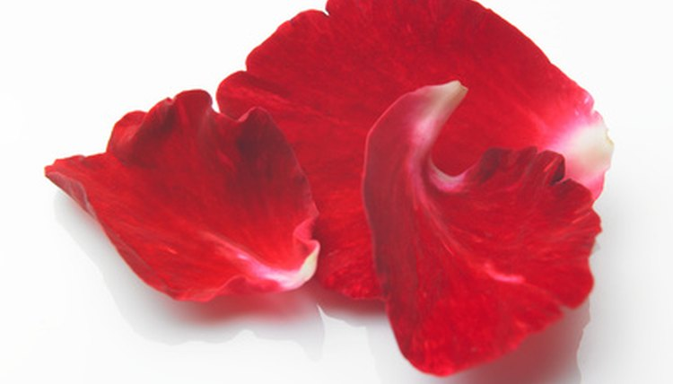 Rose petals can help you attract your true love.