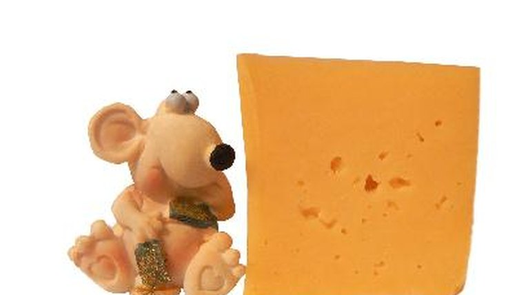Can Dogs Eat Swiss Cheese
