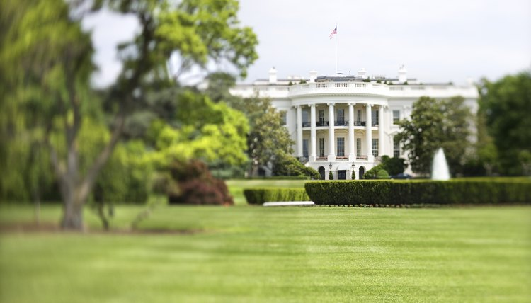 The South Lawn of the White House has room enough for livestock.
