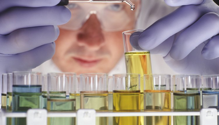 Forensic toxicologists look for evidence of drugs or chemicals in the body.
