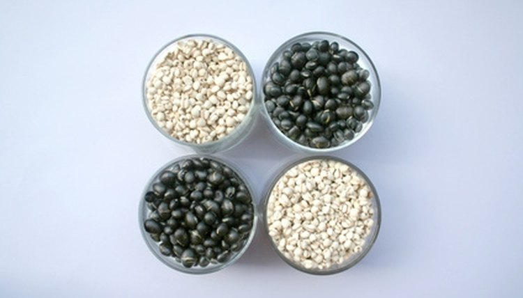 Beans can be used for a variety of science experiments.