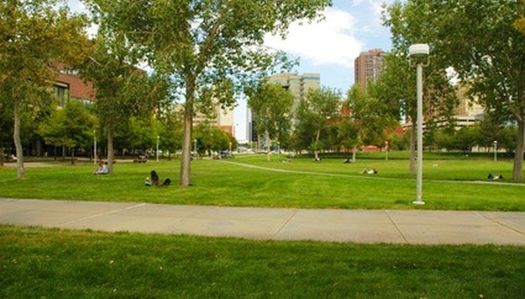 The University of Denver is one of several Division I colleges in Colorado.