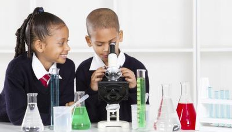 Two young students use a microscope to study different types of organisms