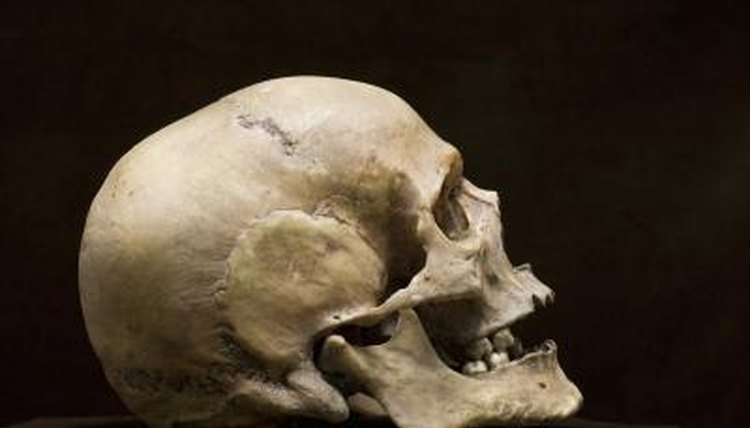 Foresnic anthropologists may be able to identify human remains.