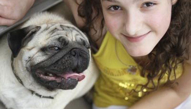 A girl connects with a pug.