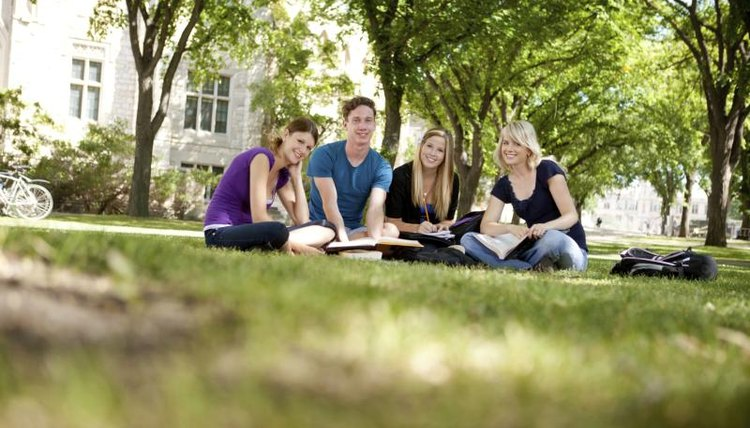 A cheerful group of college students sitting on lawn studying.