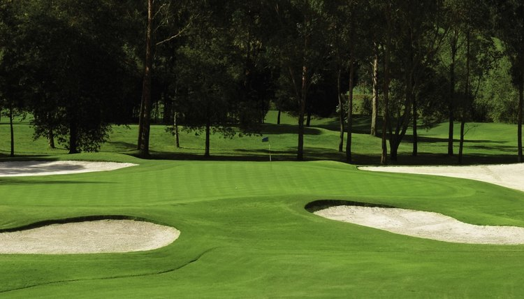 A typical fairway with mown stripes.