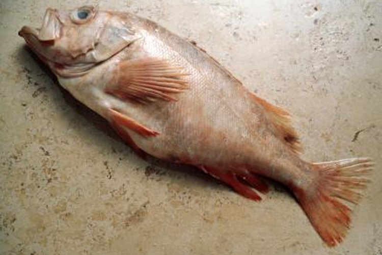 Redfish and red drum are the same fish.