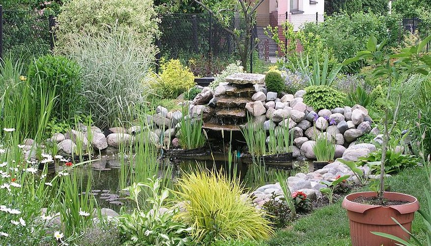 A lush garden pond with a waterfall.