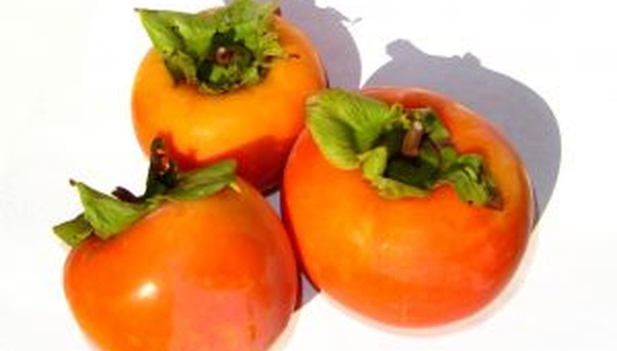 Asian persimmon fruits are orange.