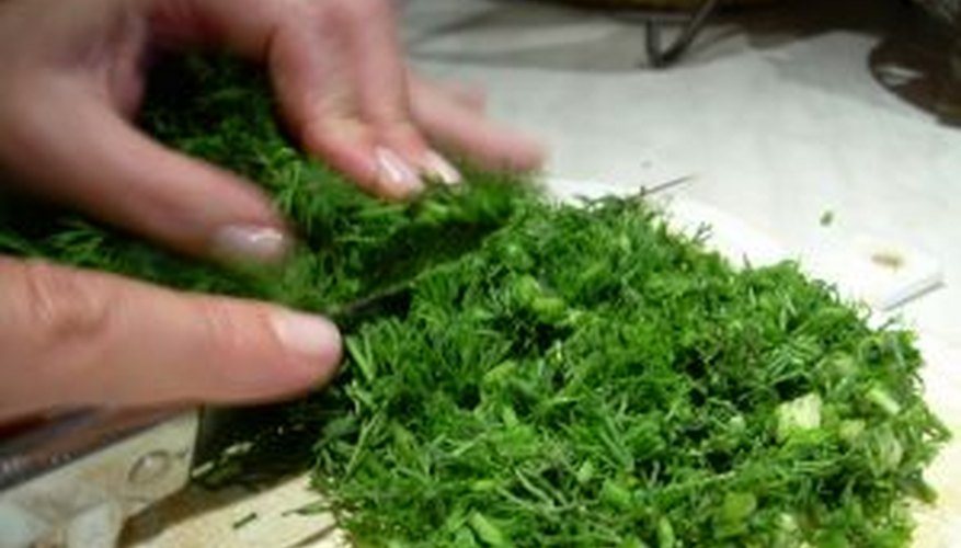 Chopping dill leaves for cooking.