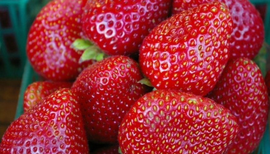 Strawberry tower planters yield large crops of fruit in a very small area.