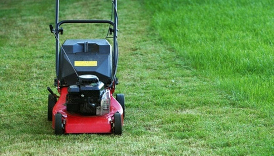 Gas-powered lawnmowers run on combustion engines.