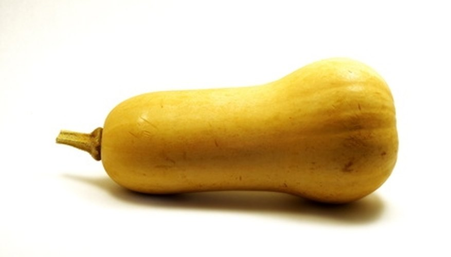 Butternut squash ripens in fall to winter, depending on planting date.