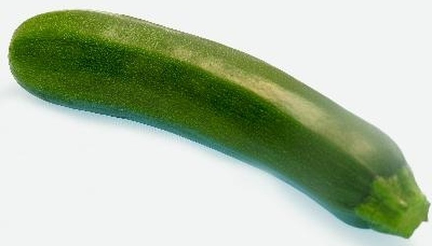 Zucchini taste best when picked young.
