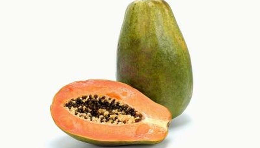Papaya is a tropical fruit that is occasionally damaged by worms.