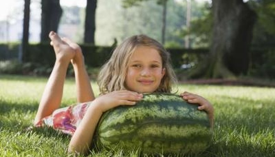 Picking a watermelon too soon can leave you with a sour, unripe fruit.
