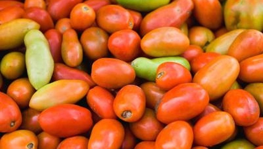 Allow Roma tomatoes to ripen slowly for best flavor.