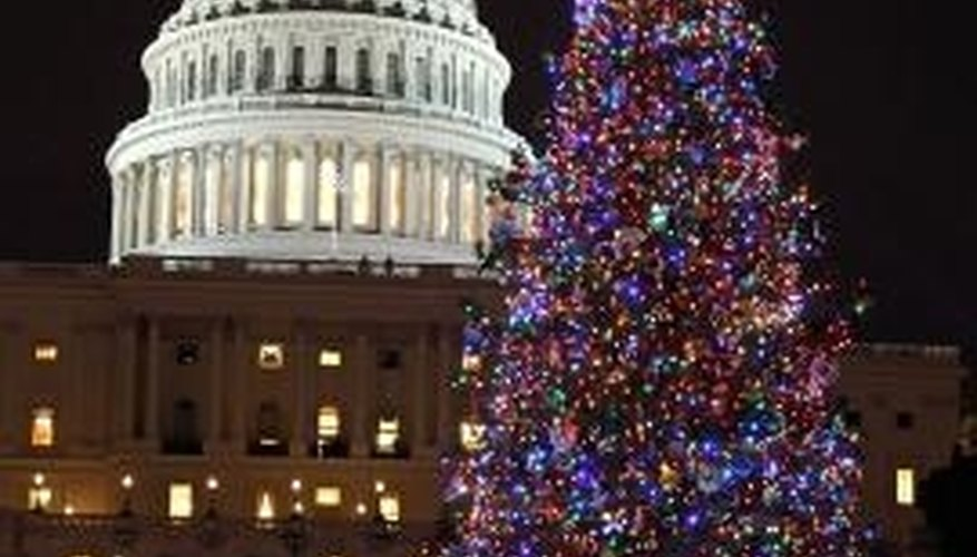 A blue spruce serves as the National Christmas Tree in Washington D.C.