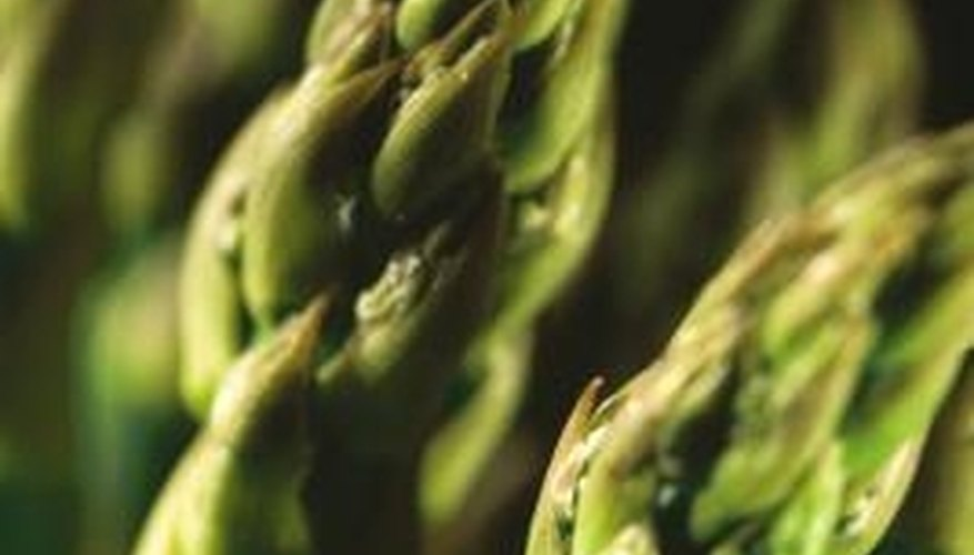 Asparagus can live up to 20 years in a home garden.
