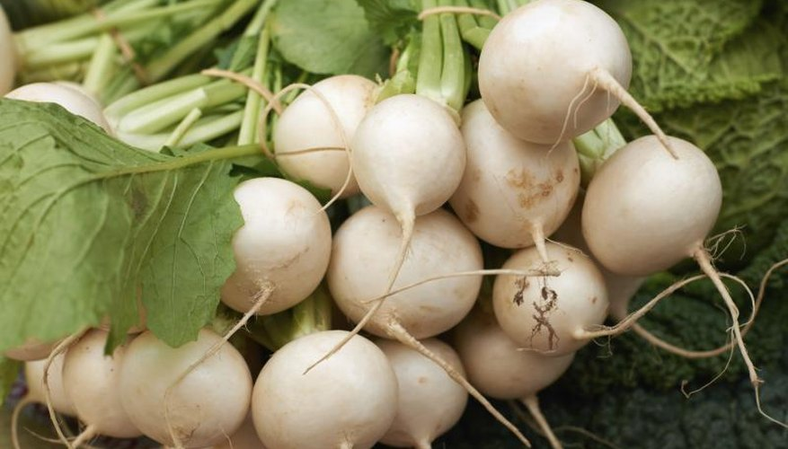Fresh white turnips for sale at a market.