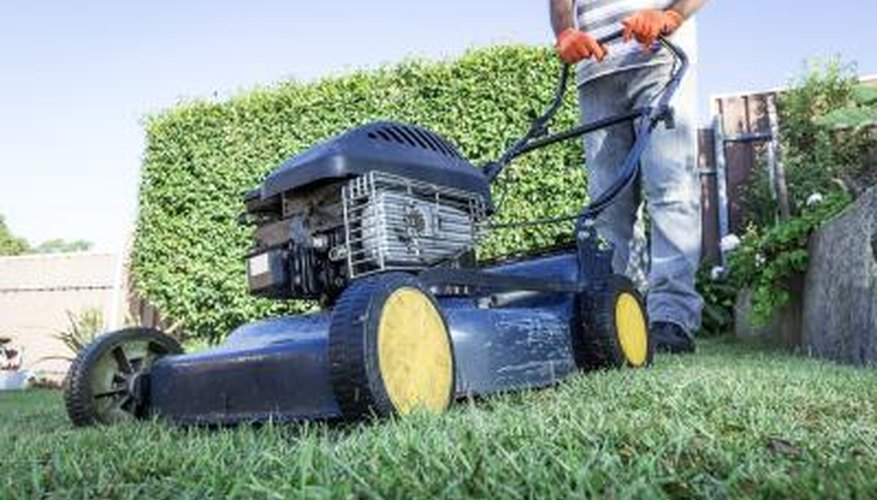The best treatment for Pythium blight is prevention with proper lawn maintenance.