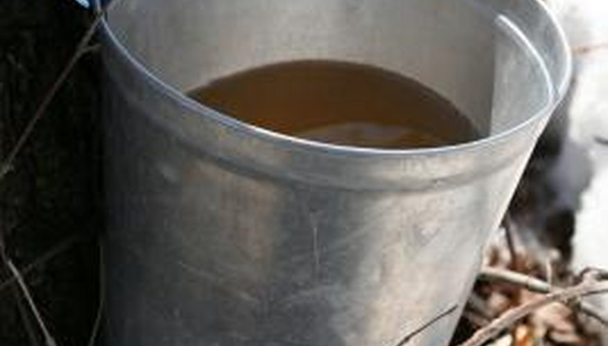 Maple syrup is easily made at home.