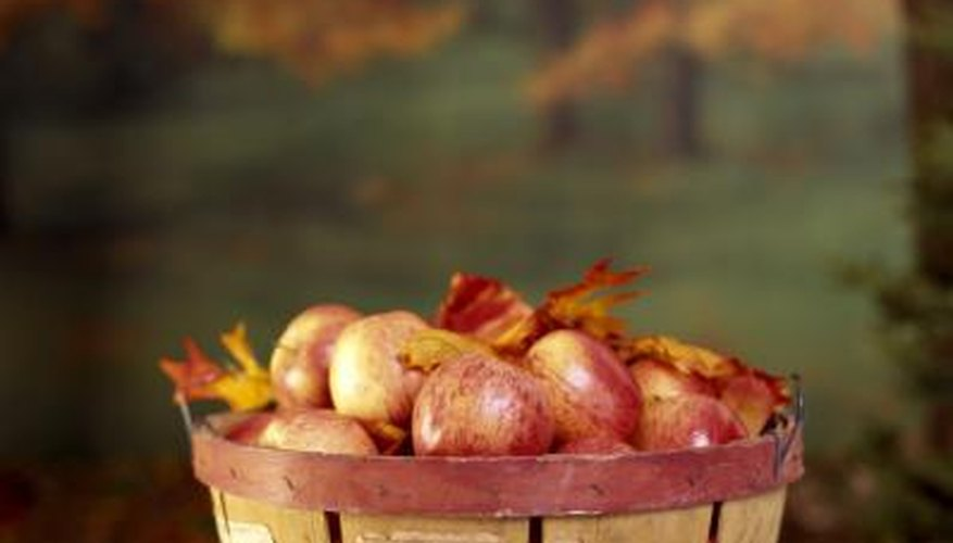 Apples are a fall icon, but they can also ripen throughout the summer.