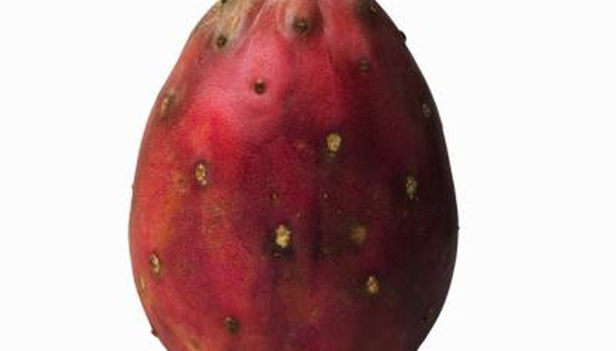 Prickly pear fruits are sometimes called tunas.