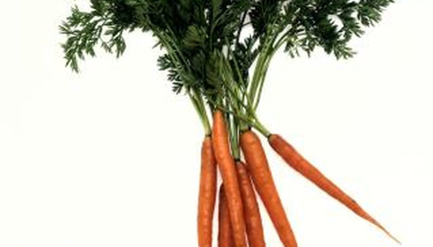 Carrots don't need soil to grow and flourish.