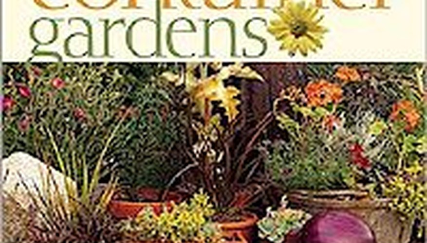 Better Homes And Gardens Container Gardens Garden Guides