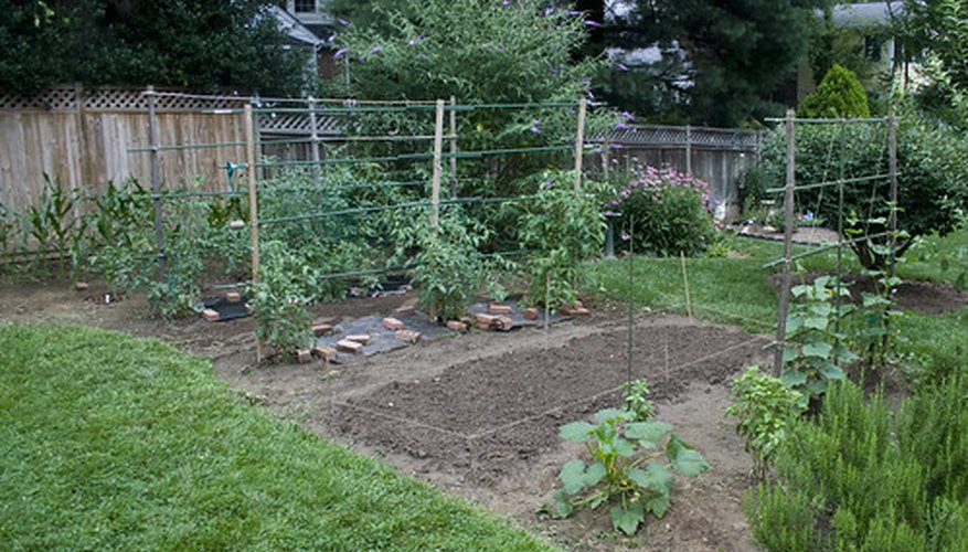 Oregon gardening offers great fresh vegetables.