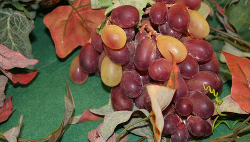 Muscadine grapes make great jam, pie and wine.