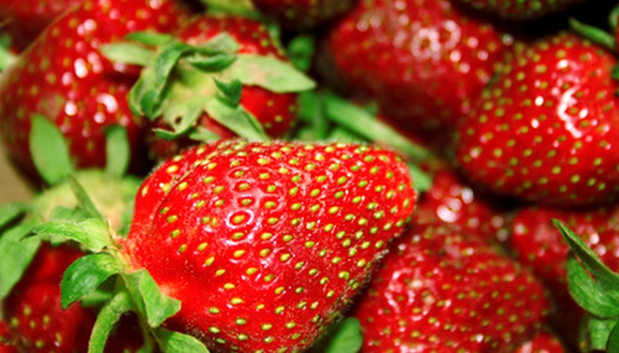 Strawberry seeds can be removed from the fruit and planted.