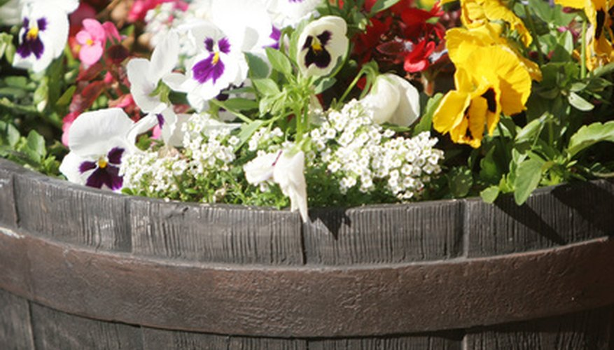 Make flower planters to save space and money.