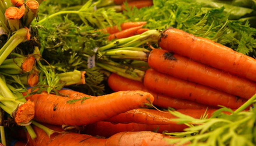 Carrots are ready to harvest 58 to 70 days after planting.
