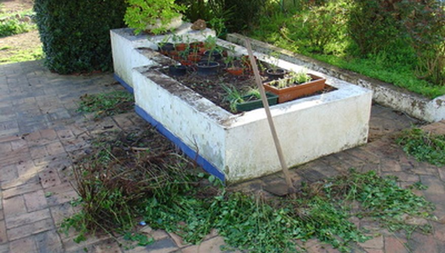 Mix soil and amendment in raised beds.