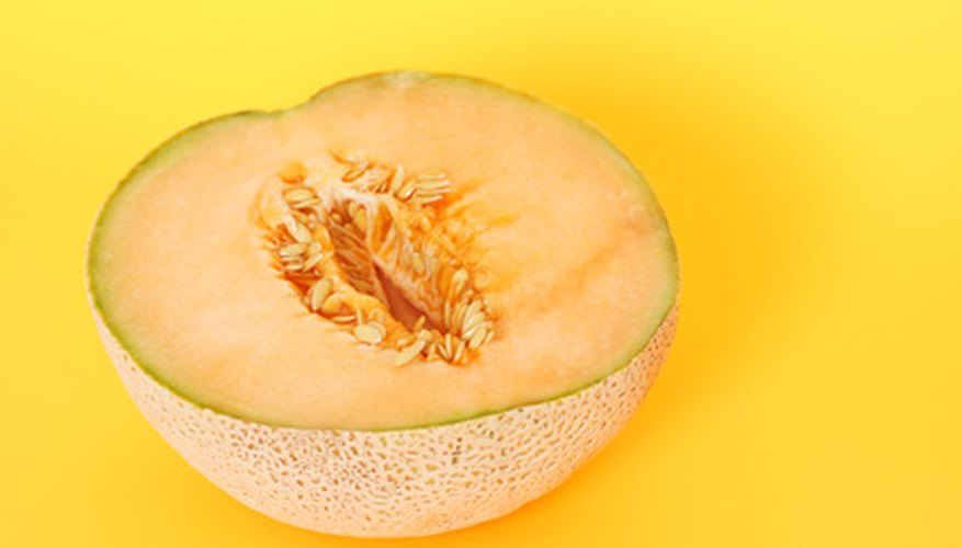 The names cantaloupe and muskmelon are used interchangably in the U.S.