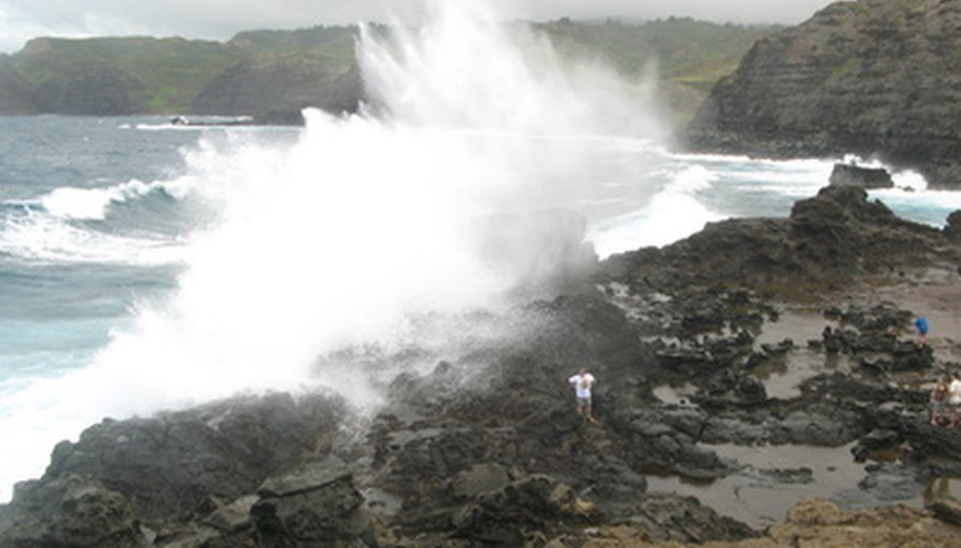Gardens near the ocean can be harmed by sea-spray.