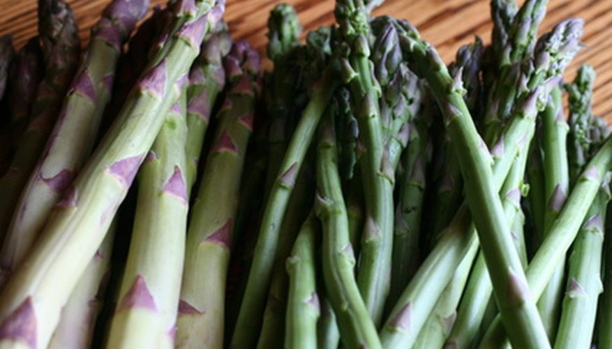 A single asparagus plant should have 8 spears of asparagus.
