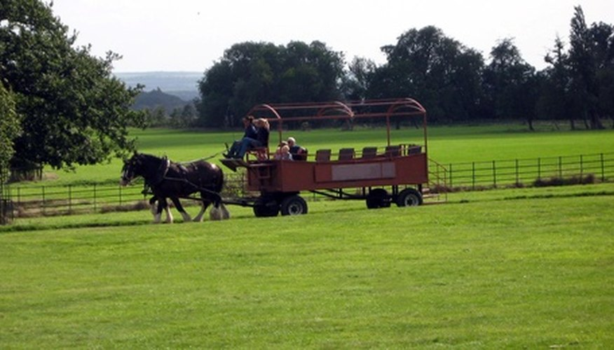 A horse accelerates the cart's movement. The cart's mass slows the horse.